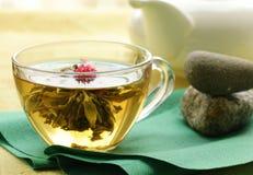Exotic green tea Stock Photos