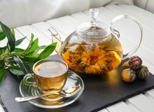 Exotic green tea with flowers in glass teapot stock image