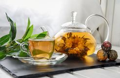 Exotic green tea with flowers in glass teapot royalty free stock photos