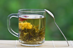 Exotic green tea in a glass mug. On a green background Royalty Free Stock Image