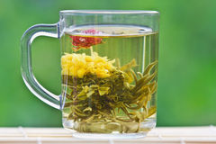 Exotic green tea in a glass mug. On the background of the summer Royalty Free Stock Images