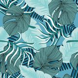 Exotic Hawaiian Plant Seamless Pattern. Leaf Wallpaper. Tropical Pattern, Palm Leaves Stock Photos