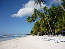 Exotic holidays. Amazing view in the Philippines - palm trees, the ocean and blue sky stock photography