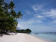 Exotic holidays. Amazing view in the Philippines - palm trees, the ocean and blue sky royalty free stock images