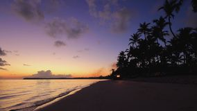 Exotic island and beautiful sunrise on the beach. Morning in Punta Cana, Dominican Republic. Sunrise over tropical island beach and palm trees. Punta Cana stock video