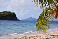 Exotic island with white sandy tropical beach and palm tree. On sunny day Royalty Free Stock Photos