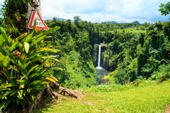 Exotic jungle forest lookout, wild vegetation and tropical tree. With Give Way sign, view of Sopoaga Waterfall on background, Samoa, Upolu Island stock photo