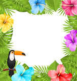 Exotic Jungle Frame with Toucan Bird, Colorful Hibiscus Flowers Blossom Stock Photos