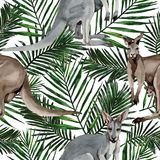 Exotic kangaroo wild animal pattern in a watercolor style. Royalty Free Stock Photography