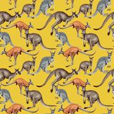 Exotic kangaroo wild animal pattern in a watercolor style. Royalty Free Stock Images