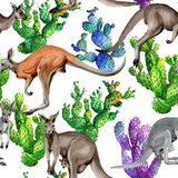 Exotic kangaroo wild animal pattern in a watercolor style. Stock Photo