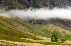 Exotic landscape from the Highlands of Scotland. Stock Images