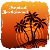Exotic Landscape with Palm Stock Image