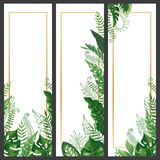 Exotic leaves banner. Tropical monstera leaf, palm branch and vintage hawaii nature plants vertical banners vector. Exotic leaves banner. Tropical monstera leaf royalty free illustration