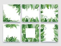 Exotic leaves frame. Tropical leaf border, nature summer frames and luxury palm leaves borders vector design background