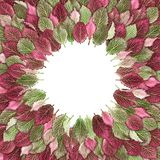 Exotic leaves in green and pink decorated in a circle. Can be used as background Stock Image