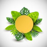 Exotic leaves and paper round shape frame vector illustration
