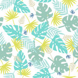 Exotic leaves pattern. Royalty Free Stock Photography