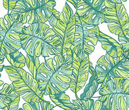 Exotic leaves, rainforest. Seamless hand drawn  pattern. Royalty Free Stock Images