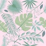 Exotic leaves, rainforest. Seamless realistic tropic leaf pattern. Palm leaf, banana leaf, hibiscus, plumeria flowers. Jungle tree Royalty Free Stock Image