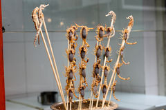 Exotic Local Delicacies in China. A shot of the wild and exotic local delicacies in Beijing, China.  Including sea horses and scorpians ready to be dep fried Royalty Free Stock Photography