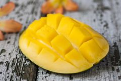 Exotic mango Stock Photography