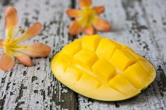 Exotic mango Stock Photos