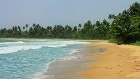 Exotic matara beach, sri lanka stock footage