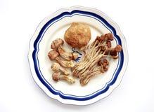 Free Exotic Mushrooms, Dried Royalty Free Stock Image - 6497226