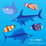 Exotic nature Fish set. Under water Llfe. Exotic nature Fish set. Marine Vector Illustration Stock Photo