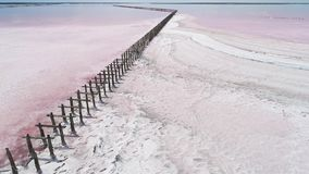 Exotic nature landscape pink lake water white salt. Exotic nature landscape. Pink lake water. White dry salt surface stock footage