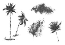 Exotic nature safari texture with the planet and palm forms. Stock Photography