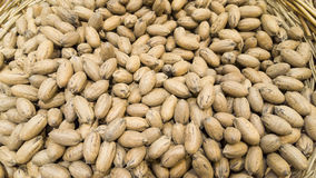 Exotic nuts texture for sale Stock Photos