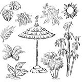 Exotic objects set, outline. Exotic objects set, black contour on white background: umbrella canopy, plants, leaves, flowers, the sun Stock Photo