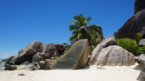Exotic paradise. Summer in exotic paradise on la digue island Royalty Free Stock Photos