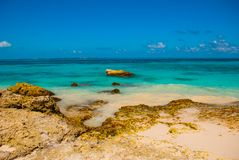 Exotic Paradise. Tropical Resort. Caribbean sea Jetty near Cancun. Mexico beach tropical in Caribbean Stock Photo