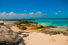 Exotic Paradise. Tropical Resort. Caribbean sea Jetty near Cancun. Mexico beach tropical in Caribbean Stock Photography