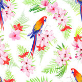 Exotic parrots and flowers seamless vector pattern Royalty Free Stock Images