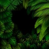 Exotic pattern with tropical leaves on a black background Royalty Free Stock Photo