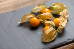 Exotic Physalis Fruits Stock Photography