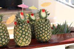 Exotic pineapple cocktails. / Natural pineapple drinks with rum or Pina colada royalty free stock photos