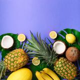 Exotic pineapples, coconuts, banana, melon, lemon, tropical palm and green monstera leaves on yellow, violet background Royalty Free Stock Photos