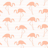 Exotic pink flamingo seamless pattern stripes Stock Photos