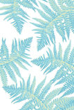 Exotic plants background with blue fern leaves Royalty Free Stock Images