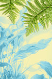 Exotic plants, green fern leaves background. Exotic plants and green fern leaves on white background Stock Photos