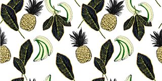 Exotic plants hand drawn pattern with pineapple and palm leaves. Exotic plants hand drawn pattern. Sketch illustration with pineapple and palm leaves Stock Photography