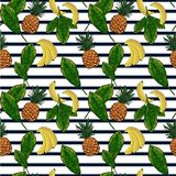 Exotic plants hand drawn pattern with pineapple and palm leaves on striped background. Exotic plants hand drawn pattern. Sketch illustration with pineapple and Stock Images