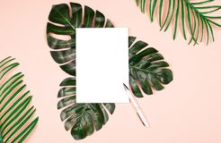 Exotic plants and note pad on pale pink background. Beautiful shiny artificial leaves of jungle plants on pale pink background and note pad with white pen for royalty free stock photography