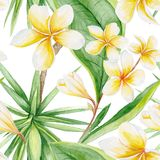 Exotic Plants Pattern Royalty Free Stock Photos