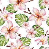 Exotic plumeria flowers and green monstera leaves on white background. Seamless tropical pattern. Watercolor painting. Hand painted floral illustration. Fabric royalty free illustration
